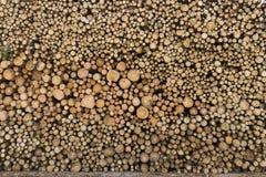 στοίβα ξυλείας Στοκ φωτογραφίες με δικαίωμα ελεύθερης χρήσης