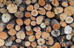 Στοίβα του δάσους Στοκ φωτογραφία με δικαίωμα ελεύθερης χρήσης