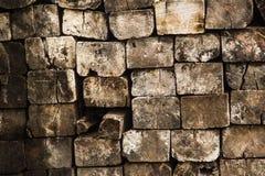 Στοίβα του δάσους Στοκ Φωτογραφία