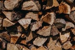 Στοίβα του δάσους Στοκ Φωτογραφίες