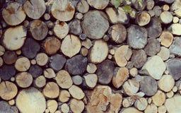 Στοίβα των κούτσουρων Πολύς το φυσικό ξύλινο υπόβαθρο κλάδων και κορμών Στοκ Φωτογραφία