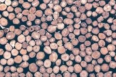 Στοίβα των κούτσουρων στοκ φωτογραφία