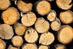 Στοίβα των ξύλινων κούτσουρων Στοκ Φωτογραφίες