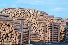 στοίβες ξυλείας Στοκ εικόνες με δικαίωμα ελεύθερης χρήσης