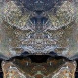 Στοιχεία βράχου Στοκ Εικόνες