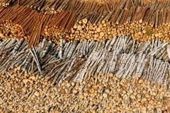 Στοιχεία συμπεριφοράς ξυλείας Στοκ εικόνα με δικαίωμα ελεύθερης χρήσης