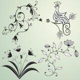 στοιχεία σχεδίου floral Στοκ Φωτογραφία