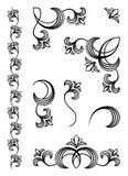 στοιχεία σχεδίου floral Στοκ Εικόνα