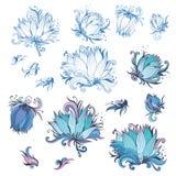 Στοιχεία σχεδίου λουλουδιών κρίνων καθορισμένα Στοκ Εικόνα