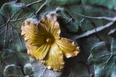 Στοιχεία των εντόμων, λουλούδια, πουλιά των θηλαστικών στην παλαιά πύλη εισόδων στο ναό της ιερής οικογένειας Στοκ Εικόνες
