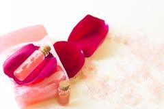 Στοιχεία Aromatherapy καθορισμένα Στοκ φωτογραφία με δικαίωμα ελεύθερης χρήσης