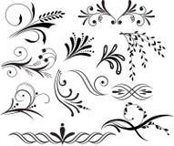 στοιχεία floral Στοκ εικόνα με δικαίωμα ελεύθερης χρήσης