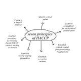 Στοιχείο γραψίματος χεριών γυναικών της αρχής επτά της έννοιας haccp στο άσπρο υπόβαθρο Στοκ Εικόνες