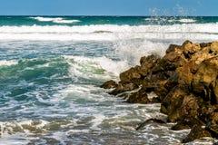 Στοιχείο θάλασσας Στοκ εικόνα με δικαίωμα ελεύθερης χρήσης