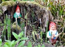 στοιχειά κήπων Στοκ φωτογραφία με δικαίωμα ελεύθερης χρήσης