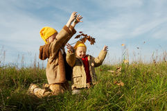 στοιχειά καλυμμάτων κίτρι Στοκ εικόνες με δικαίωμα ελεύθερης χρήσης