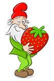 Στοιχειό κήπων κινούμενων σχεδίων που φέρνει μια φράουλα Στοκ φωτογραφία με δικαίωμα ελεύθερης χρήσης