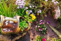 Στον κήπο στοκ φωτογραφίες