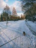 Στον περίπατο Στοκ εικόνες με δικαίωμα ελεύθερης χρήσης