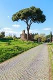Στον τρόπο Appian Στοκ Φωτογραφία