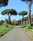 Στον τρόπο Appian Στοκ Εικόνες