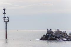 Στους βράχους Στοκ Φωτογραφίες