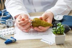 Στους γιατρούς ο παθολόγος διορισμού παρουσιάζει στην υπομονετική μορφή του αδένα παγκρεάτων με την εστίαση σε διαθεσιμότητα με τ στοκ φωτογραφία