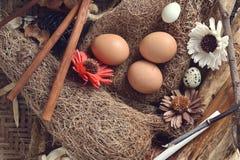 Στούντιο που πυροβολείται των αυγών ορτυκιών σε ένα εκλεκτής ποιότητας ξύλινο υπόβαθρο Στοκ Εικόνες