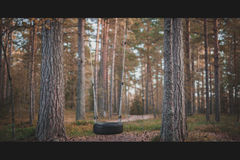 Στο δάσος Στοκ φωτογραφία με δικαίωμα ελεύθερης χρήσης