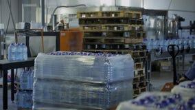 Στο άτομο εργοστασίων στο ομοιόμορφο εμφιαλωμένο νερό κινήσεων στο καροτσάκι απόθεμα βίντεο