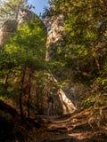 Στο εθνικό πάρκο επιτραπέζιων βουνών, Πολωνία στοκ εικόνες