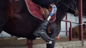 Στο ειδικό υπόστεγο, ένα με ειδικές ανάγκες νεολαίες άτομο μαθαίνει να οδηγά ένα μαύρο, thoroughbred άλογο, hippotherapy το άτομο απόθεμα βίντεο