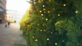 Στο κέντρο της πόλης νέα έτος και Χριστούγεννα διακοσμήσεων της Ευρώπης Χριστούγεννα tre στοκ εικόνα με δικαίωμα ελεύθερης χρήσης