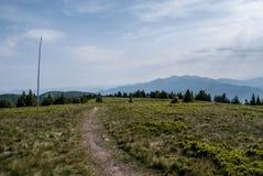 Στο λόφο Zazriva στα βουνά Lucanska Mala Fatra με το λιβάδι βουνών, η πεζοπορία σύρουν και το πανόραμα βουνών Krivanska Mala Fatr Στοκ φωτογραφία με δικαίωμα ελεύθερης χρήσης