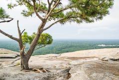 Στο μέγιστο ύψος του βουνού πετρών στοκ φωτογραφίες