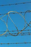 στο νεφελώδη ουρανό του Ομάν barbwire Στοκ εικόνα με δικαίωμα ελεύθερης χρήσης