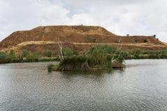 Στο πάρκο δοχείων μεταφοράς άνθρακα haSharon, περιοχή της Sharon στοκ εικόνα