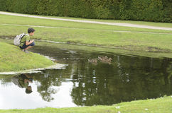 Στο πάρκο Chantilly Στοκ εικόνες με δικαίωμα ελεύθερης χρήσης