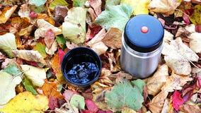 Στο πεσμένο φθινόπωρο φύλλωμα υπάρχει μια κούπα με το καυτό τσάι και thermos φιλμ μικρού μήκους