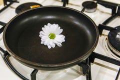 Στο τηγάνι σομπών, και σε το ένα λουλούδι, κινηματογράφηση σε πρώτο πλάνο στοκ φωτογραφία με δικαίωμα ελεύθερης χρήσης