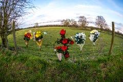Στο memoriam τα λουλούδια ΣΧΙΖΟΥΝ Στοκ Φωτογραφία