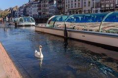 Στρασβούργο, κανάλι νερού στη λεπτοκαμωμένη περιοχή της Γαλλίας εφοδιασμένα με ξύλα σπίτια και δέντρα σε μεγάλο Ile Αλσατία Γαλλί Στοκ Εικόνες
