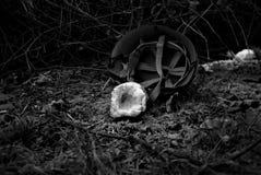 ΣΤΡΑΤΙΩΤΗΣ: Το τελευταίο βραδυνό Στοκ Φωτογραφίες