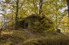 Στρατιωτική αποθήκη στο δάσος από το Δεύτερο Παγκόσμιο Πόλεμο Στοκ Εικόνα