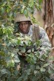 Στρατιωτικός στρατιώτης που φρουρεί με ένα τουφέκι στοκ εικόνες