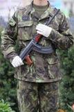 στρατιώτης Στοκ Εικόνα