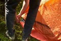 Στρατόπεδο στη σκηνή - τουρίστας που θέτει μια σκηνή στη στρατοπέδευση Οργάνωση δύο ατόμων μια σκηνή στην όμορφη θέση στο δάσος Στοκ εικόνα με δικαίωμα ελεύθερης χρήσης