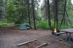 Στρατόπεδο με την πυρκαγιά και σκηνή σε ένα άγριο δάσος Στοκ Φωτογραφία