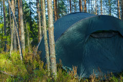 Στρατόπεδο σκηνών στο δάσος Στοκ Φωτογραφία