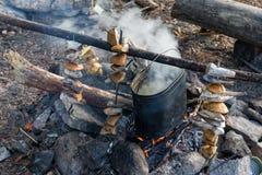 Στρατόπεδο mushroomer Στοκ εικόνες με δικαίωμα ελεύθερης χρήσης